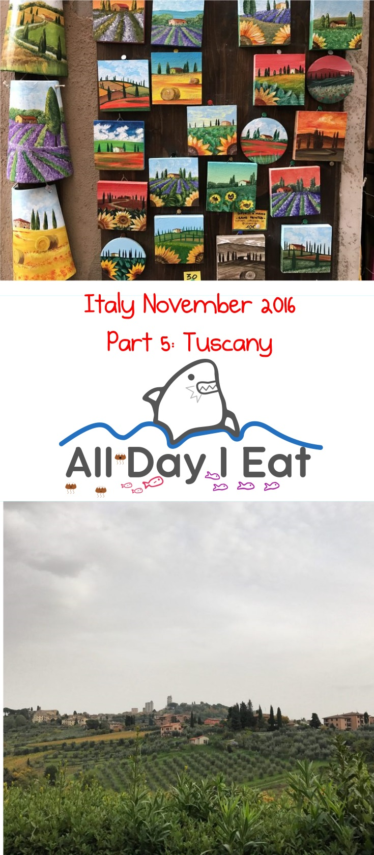 Italy November 2016 Part 5 tuscany | www.alldayieat.com