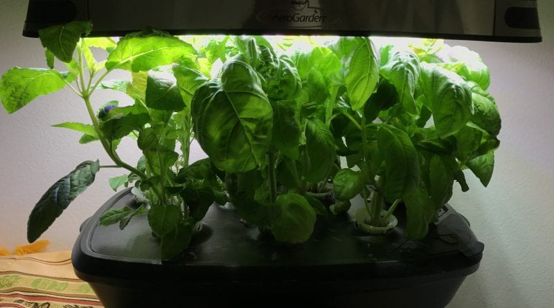 aerogarden ultra led